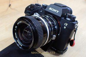 2019/9/4 α9 LM-EA7 NIKKOR 24mm