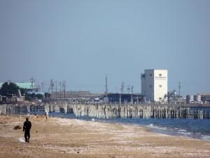 2012/10/8 P510 海岸にて