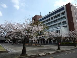 2014/4/5 SP-100EE 桜 (鈴鹿医療科学大学)