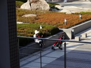 2012/11/7 HX30V 三重県総合文化センター