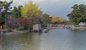 2012/11/9 九華公園にて