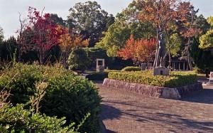 2012/11/10 神戸公園にて