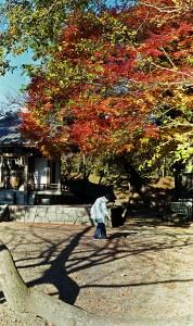 2012/12/15 オソロシアレンズ (治水神社)