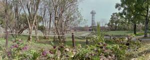 2013/3/23 春よ来い  木曽三川公園にて