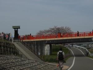 2013/4/1 XF1 清須公園の桜