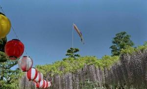 2013/5/2 竹成 五百羅漢 にて